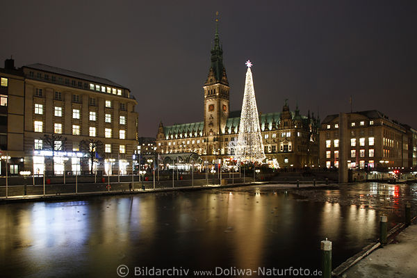 Christmas tree over small alster Hamburg hall town photo city romantic advent nightly lights