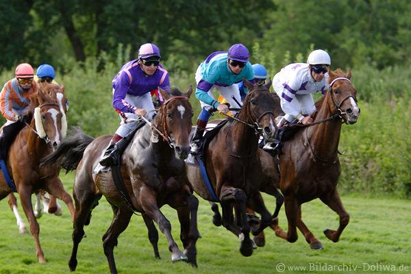 Gallop Races By Horse Sport Sportevent Jockeys On Running Horses In Sprint Photo Speed Dynamic Tournament Galopp