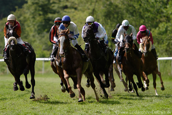 Running Horses In Gallop Sunday Morning With Maria Papke Left Castur Filip Minarik Lead Race Dynamic Speed