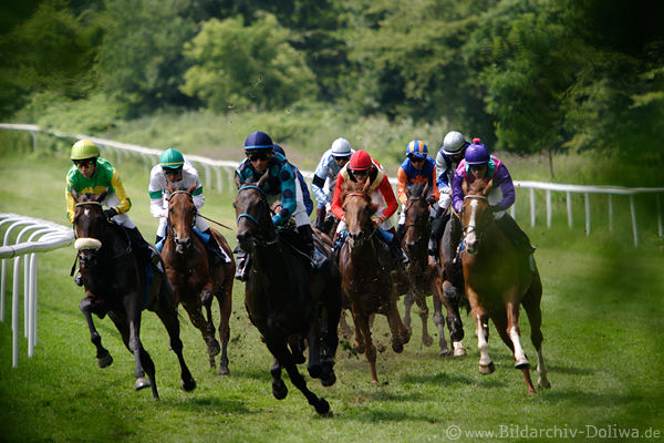 Romanticism By Horse Racing Gallopevent In Photo Running Horses Gallop Race Dynamic Noreen With Adrie De Vries